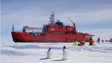 red ship stationed in snow with penguins in front